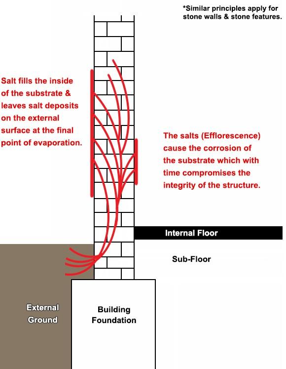 how salt damages walls - efflorescence